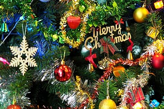 Close-up photo of green Christmas tree with hanging ornaments