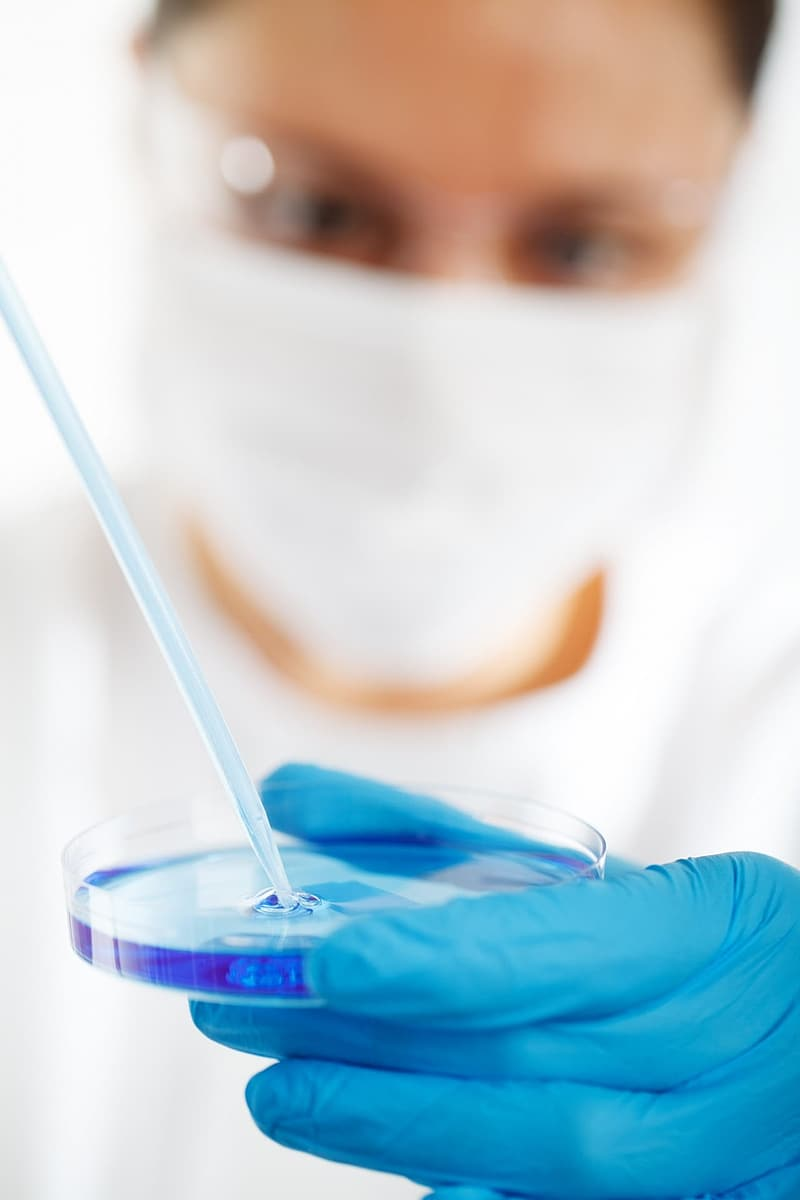 Close up photography of person in blue laboratory gloves holding round clear case with blue liquid