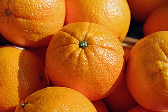 Pile of orange fruit