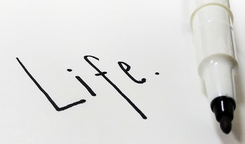 Opened marker with life text