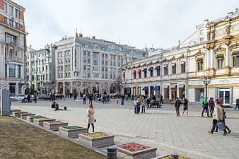Group of people near buildings during daytime