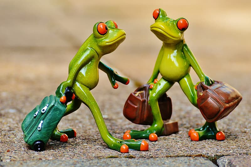 Shallow focus photography of two green frog plastic figures