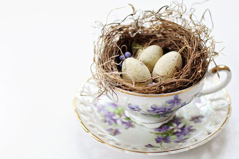 Three white eggs on brown nest in white ceramic teacup with saucer