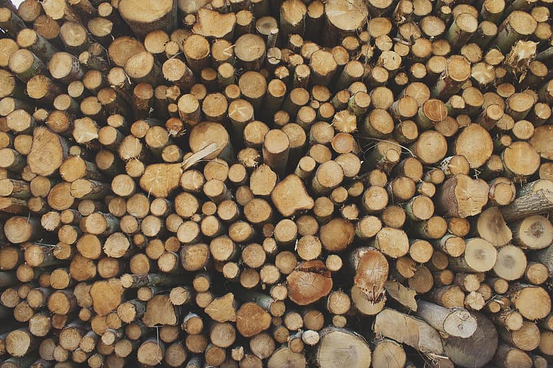 Stack of brown logs