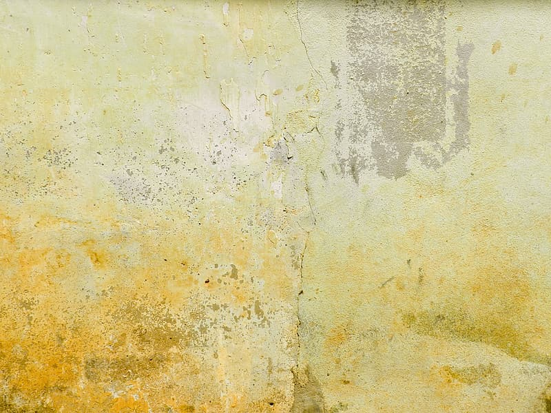 Yellow and white concrete wall