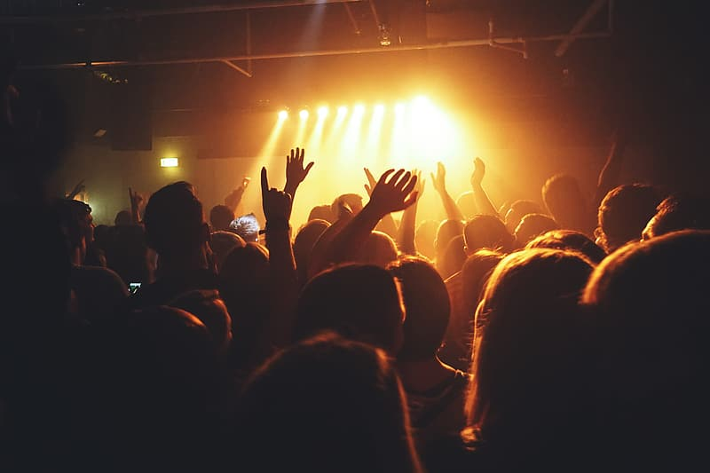 A crowd of people at a music concert
