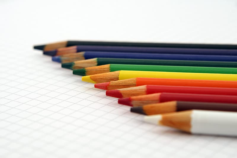 Shallow focus photography of colored pencil set