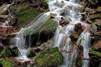 Water falls on green moss covered rocks