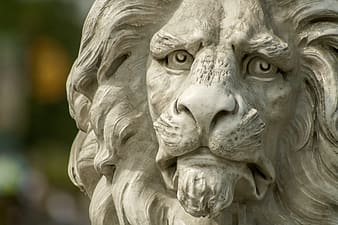 Brown lion statue