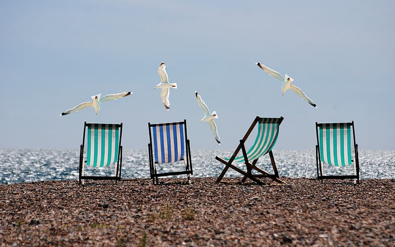 Four green and blue folding chairs on seashore