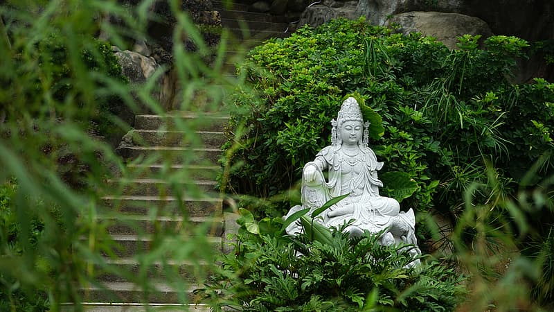 Gray Buddha statue surrounded by green leaf plants at daytime