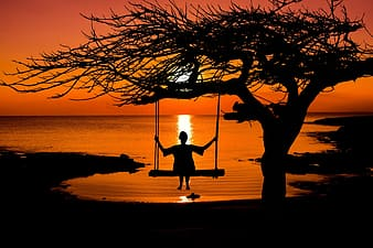 Person on swing silhouette