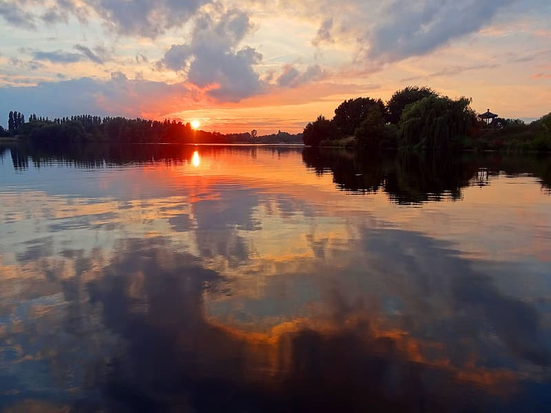 Trees across body of water in panoramic view photography during golden hour