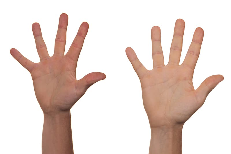 Person's showing their right hands