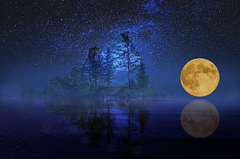 Yellow full-moon and trees