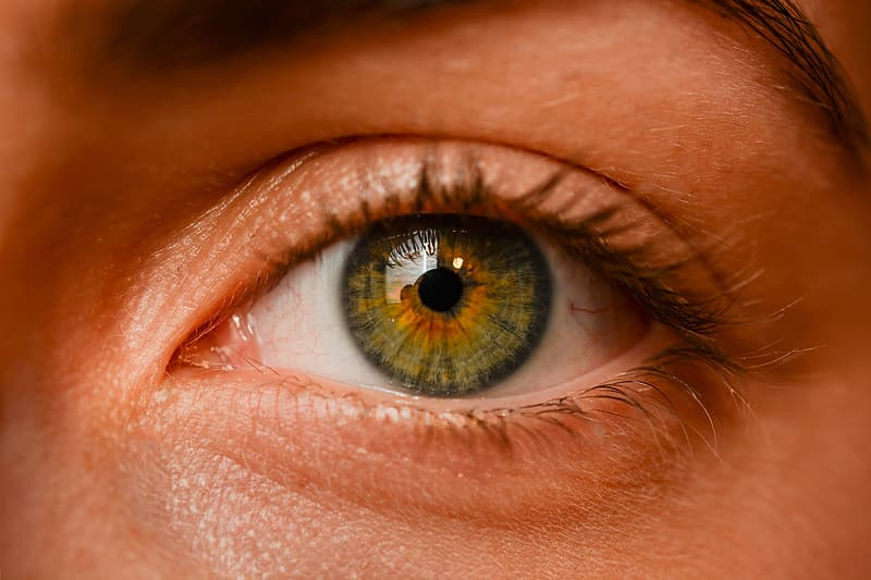 Person with green and black eyes in close up photo