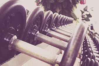 Pile of gray-and-black dumbbells