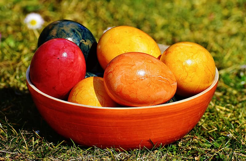 Assorted fruits on red ceramic bowl