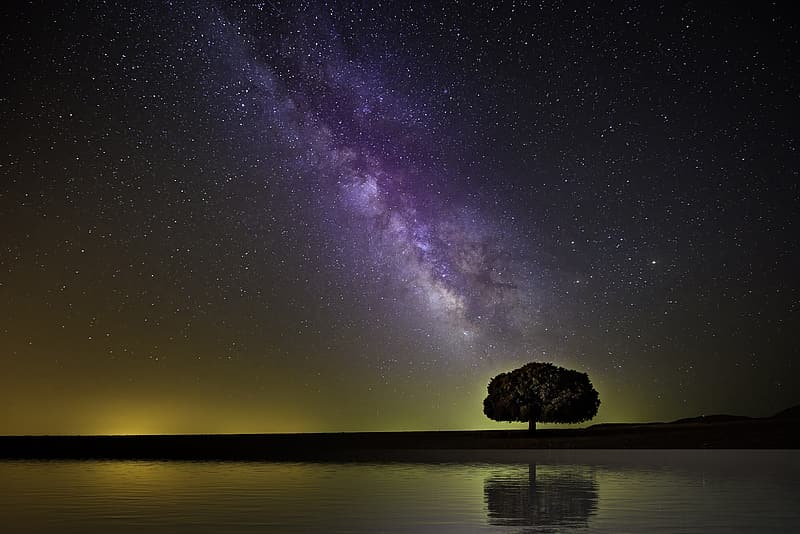 Silhouette of rock formation on body of water under starry night