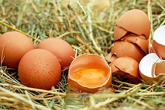 Brown eggs and one brown eggs broken