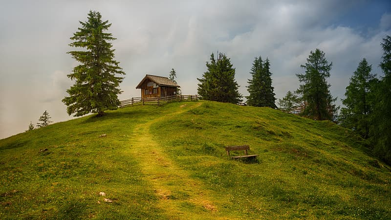 House on top of hill surrounded by trees