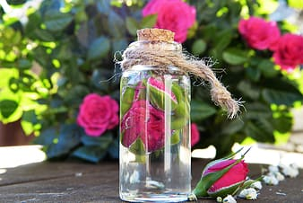Clear glass jar with pink rose