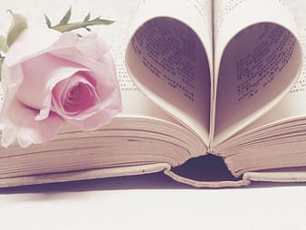Open book with heart page