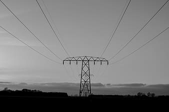 Grayscale photo of power lines