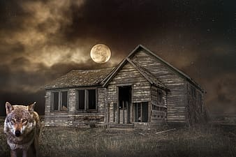 Brown wooden house under full moon