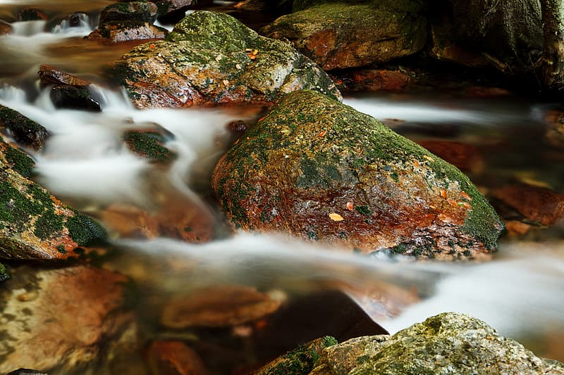 Green-and-brown stones on body of water