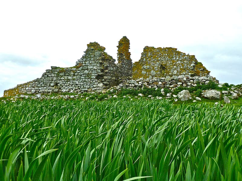Stone ruins and grass field
