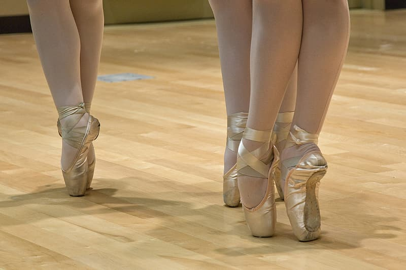 Pair of brown ballet shoes