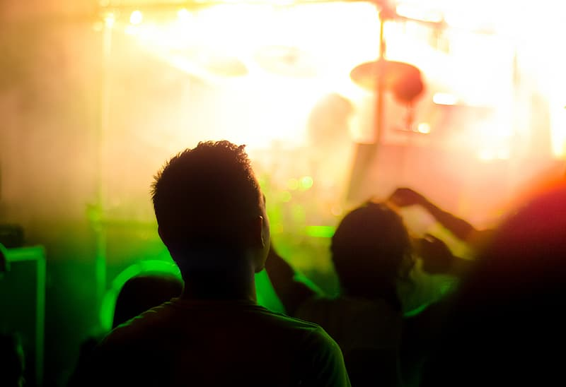 People on concert during nighttime