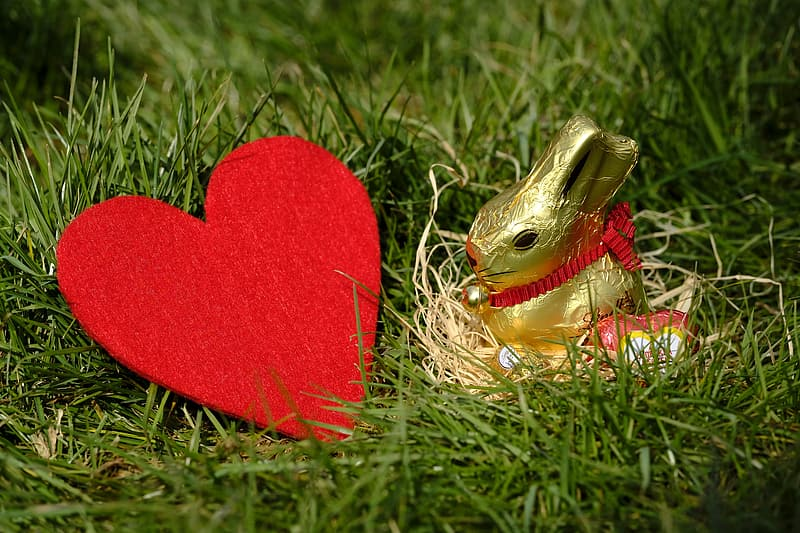 Red heart ornament on green grass