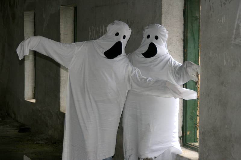 Two Halloween costumes