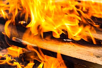 Close up photo of wood fire