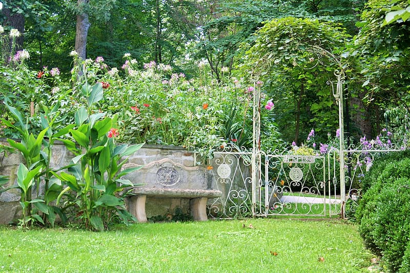 Gray concrete bench surrounded by green grass and trees during daytime