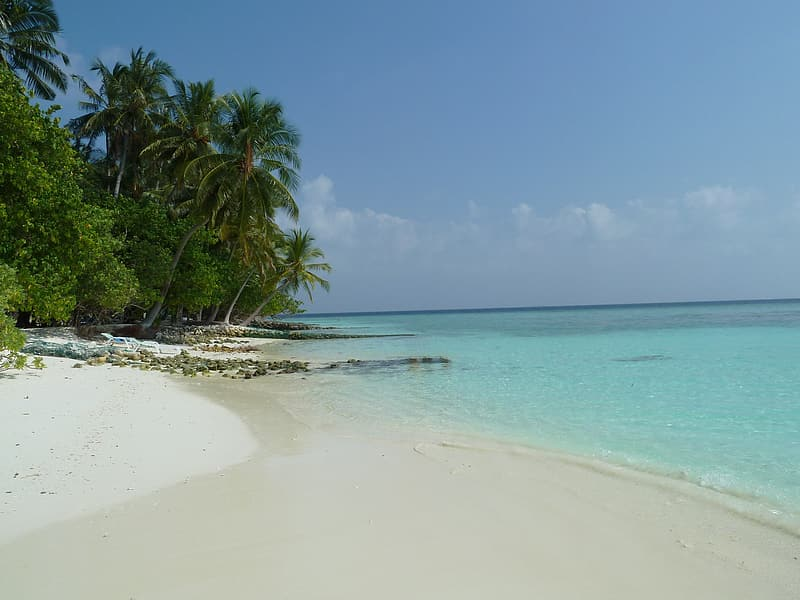 Calm sea near white sand under clear blue sky during daytime