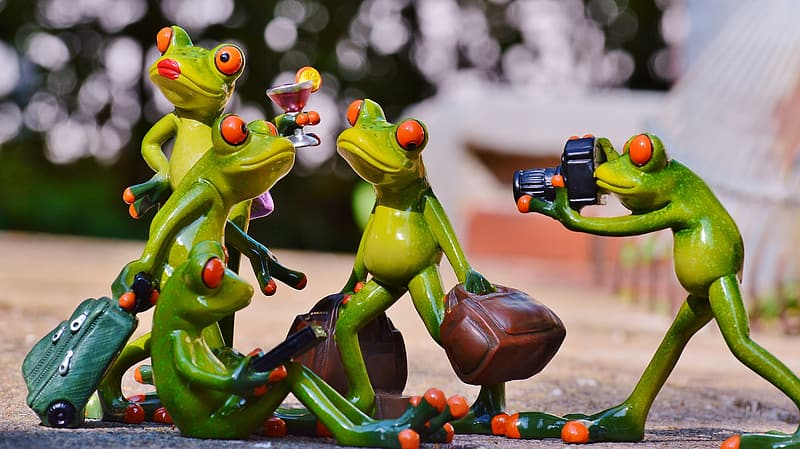 Shallow focus photography of four green frogs making a pose figurine