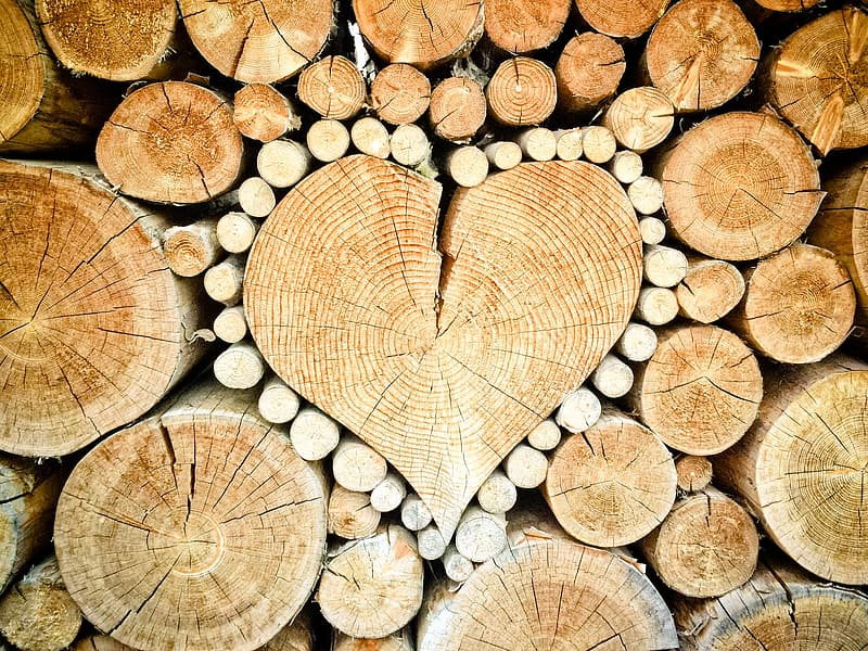 Wood logs forming heart wallpape