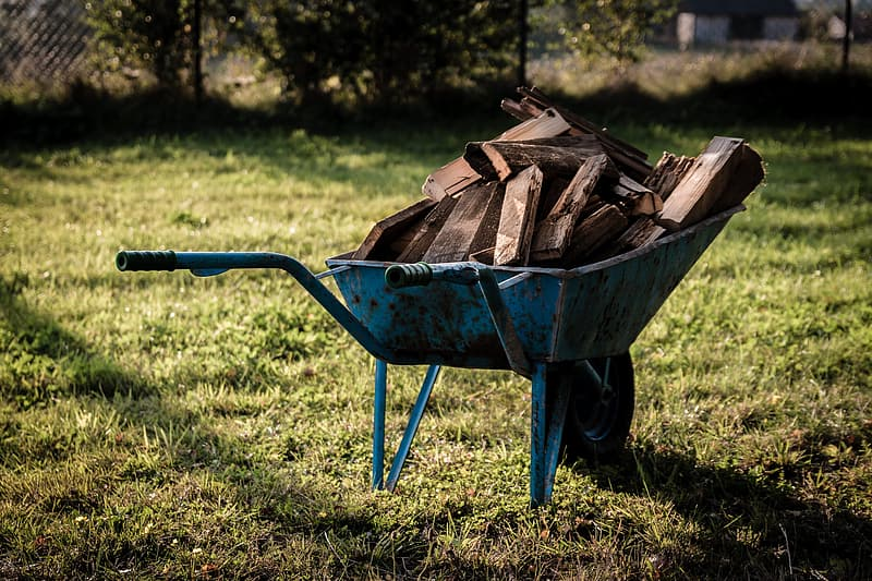 Blue wheelbarrow with firewoods on green lawn