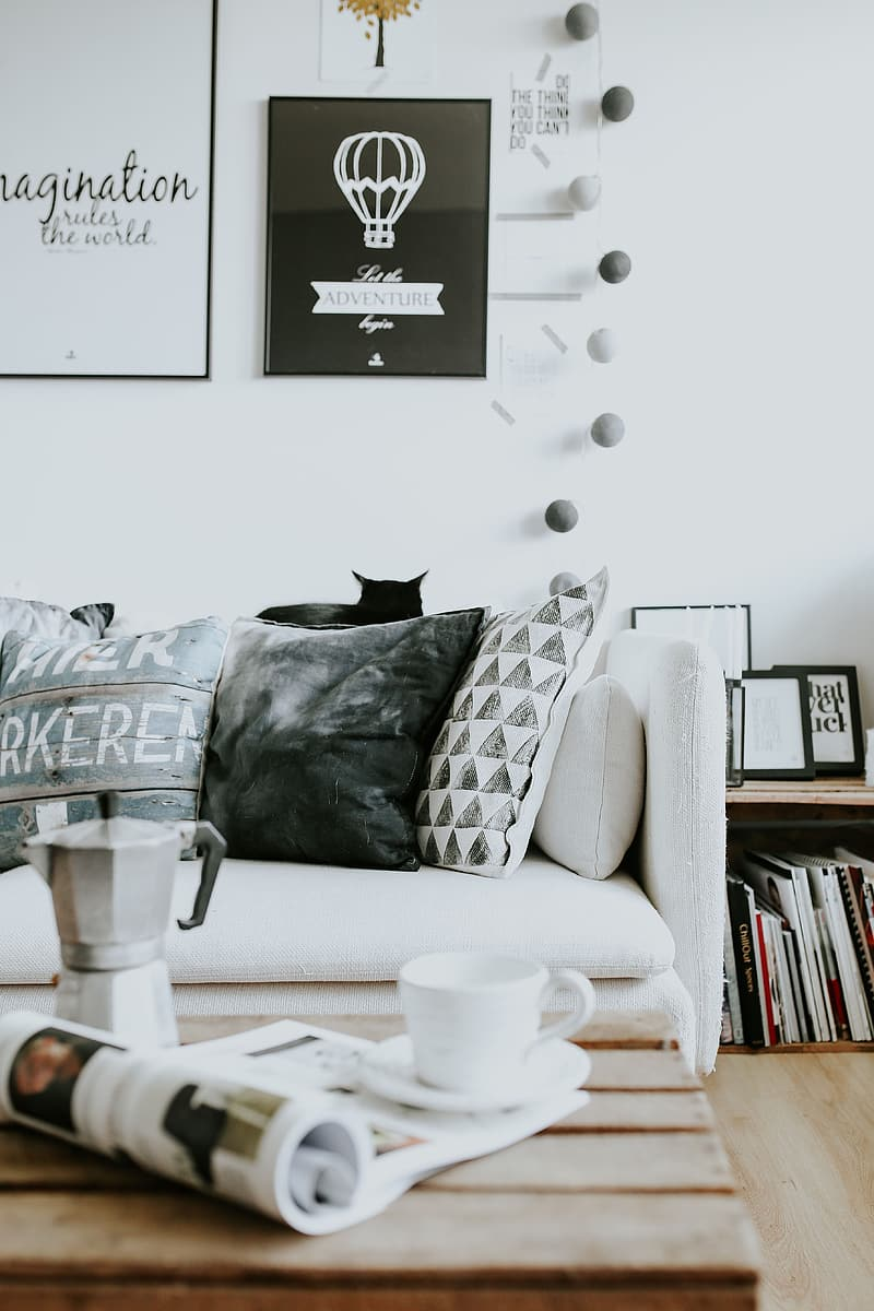 Black and white cat on white couch