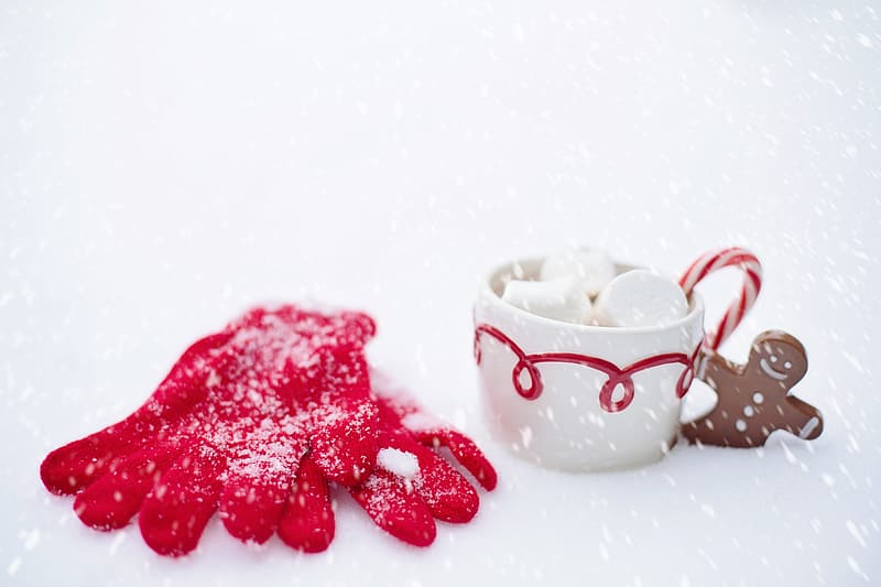 Pair of red gloves