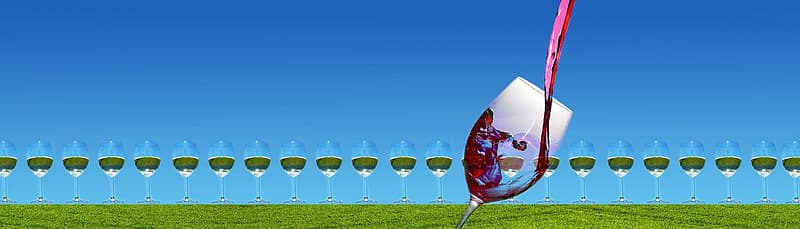 Clear wine glasses on green grass field