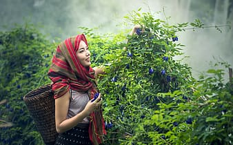 Woman in white sleeveless top and red and brown striped headscarf holding green plants