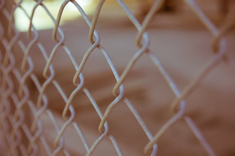 Close-up photography of gray metal fence
