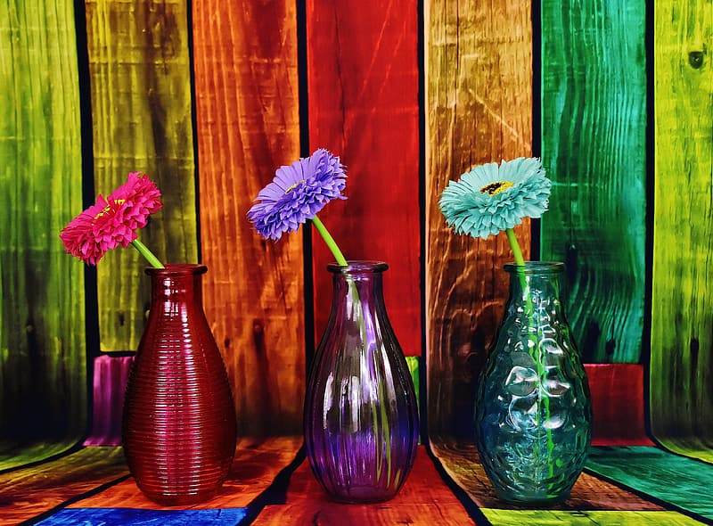 Three assorted-color petaled flowers with glass vases