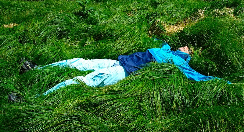 Man lying down on green grass