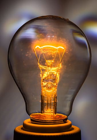 Focus photo of bulb