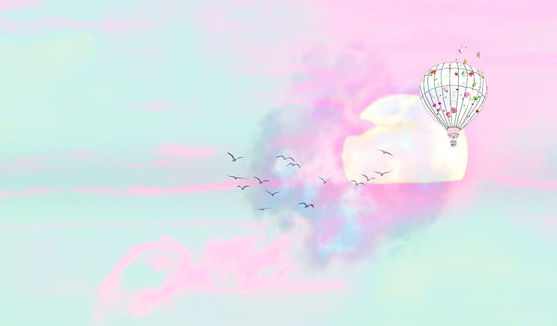 Illustration of white and pink hot air balloon and black flying birds